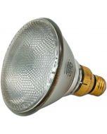 PAR 38 Lamp