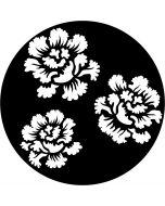 Apollo 1126 - Rose Porcelain, B-size