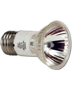 PAR 20 Lamp