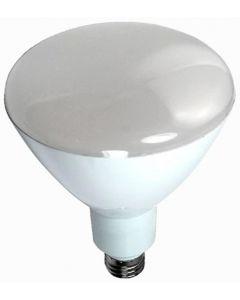 PAR 38 LED Lamp - 18w, 105°