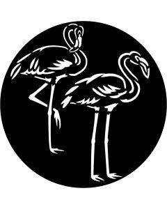 Apollo 3512 - Flamingo