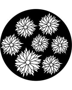 Apollo 9108 - Boho Flowers