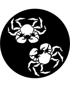 Apollo 9115 - Dos Crabs